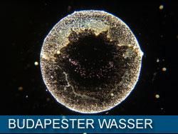 budapester_wasser_kl
