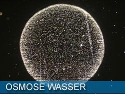 osmose-wasser