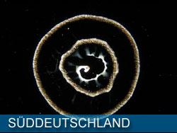 wasser_sueddeutschland
